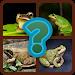 Download 4 Fotos 1 Animal Em Português 3.2.7z APK