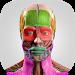 Download Anatomy Cards Anatomicus 1.0.9 APK