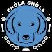 Download Bhola Shola 7.8R APK