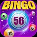 Download Bingo Happy : Casino Board Bingo Games Free & Fun 1.10 APK
