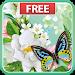 Download Butterflies Live Wallpaper 1.1.0 APK