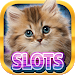 Download Casino Kitty Free Slot Machine 1.2.0 APK