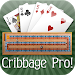 Download Cribbage Pro 2.6.8 APK
