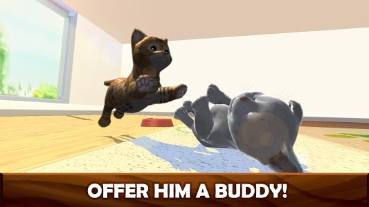 Download Daily Kitten : virtual cat pet 3.4 APK