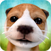 Download Dog Simulator 2.2.3 APK