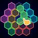 Download Hexagon - Block Puzzle 1.1 APK