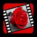 Download Love videos 32.0 APK