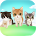 Download My Talking Kitten 1.1.6 APK