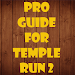 Pro Guide for temple Run 2
