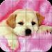 Download Puzzle - Puppies 1.21 APK