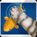 Download Simulator Cat Fishing 1.5 APK