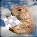 Download Super Cute Sudoku 1.0 APK