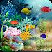 Download Underwater World Livewallpaper 1.7 APK