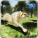 Download Wild Cheetah Jungle Simulator 1.5 APK
