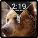 Download Bear zipper - fake 0.0.8 APK